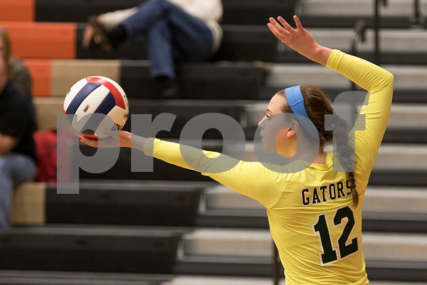 Sam Buckner for Shaw Media<br /> Emily Slimko serves the ball in the first gameof the championship match against DeKalb on October 29, 2015. The Gators won the series 2-1.