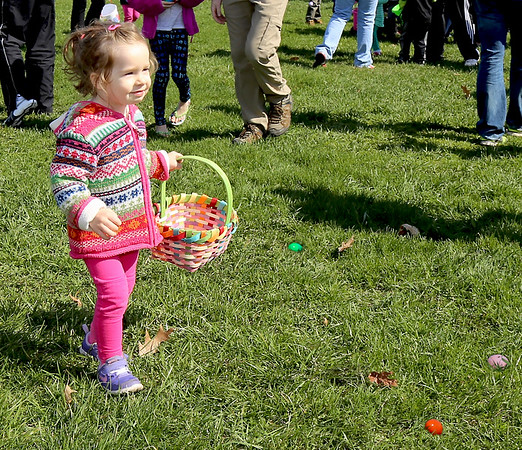 Lena Walley, 2, of Elburn participates in the Elburn Lions Club Easter Egg Hunt on April 8.