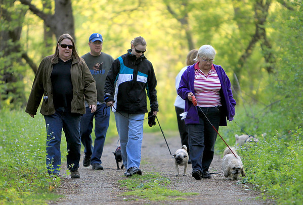 (Left to right) Amy Cihak, Andy Hannon, Nancy Moss, Valerie Ulmer (behind) and Shirley Ulmer walk their dogs during a Meet Up group dog walk on the Old Quarry Road Trail in South Elgin Tuesday evening.
