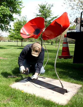 "Alex Desimone of the St. Charles Park District works to install a sculpture by Jennifer Meyer titled, ""2 Astonishing Poppies"" at Mount St. Mary Park in St. Charles as part of the Sculptures in the Park series."