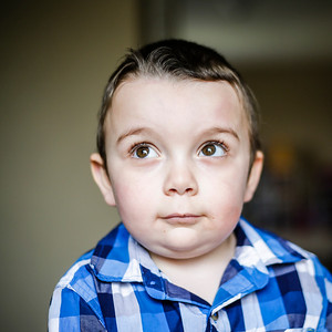 Lathan Goumas - lgoumas@shawmedia.com A portrait of Mason Fresso, 4, on Wednesday, April 24, 2013 at his home in Lake in the Hills, Ill. Mason was diagnosed autistic at age one and the family is attempting to raise money for an autism assistance dog to help him.