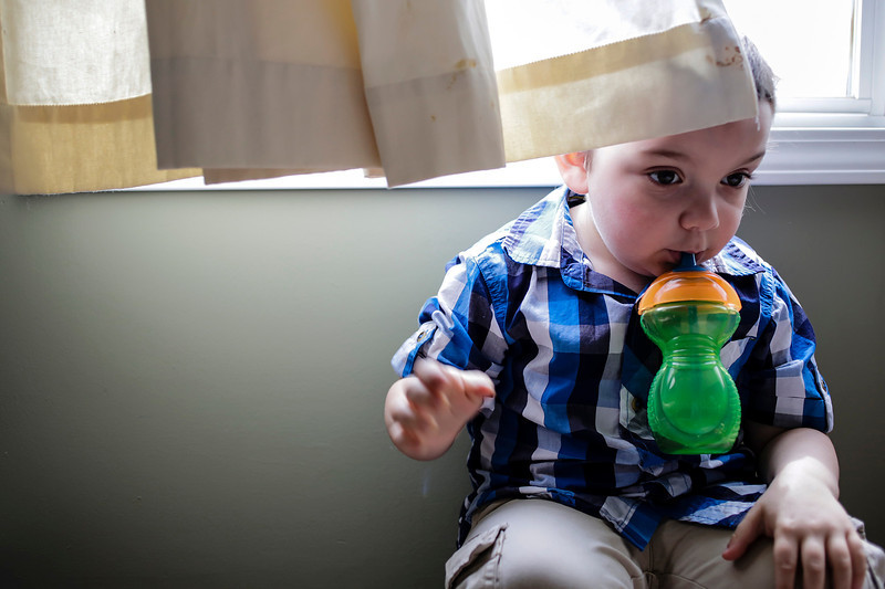 Lathan Goumas - lgoumas@shawmedia.com Mason Fresso, 4, sits under a window in his home in Lake in the Hills, Ill. on Wednesday, April 24, 2013 Mason was diagnosed with autism when he was one year old and his family is trying to raise money for an autism assistance dog to help mason.