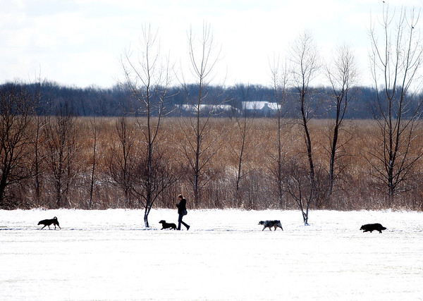 A woman walks with her dogs through the snow at West Main Community Park near Batavia Tuesday morning.