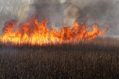 hnews_wed0415_Uncontrolled_Burn_01
