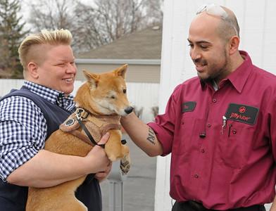 Injured dog returns to thank employees