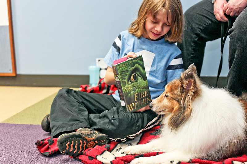 Michelle LaVigne/ For Shaw Media Eleven-year-old Charlie Davis of Crystal Lake, shows Joey, a member of the Pet Partner volunteer team, the book that he will be reading to him at the Crystal Lake Public Library on Tuesday, April 2, 2016.