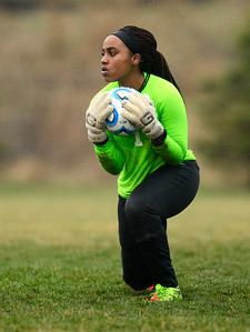 Hampshire junior Christine Abihudi makes a save during a game against Woodstock North Monday April 3, 2017 at Hampshire High School. Woodstock North won 3-2.