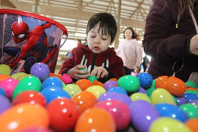 Candace H. Johnson-For Shaw Media Alonzo Reyes, 5, of Lake Villa goes through his Easter eggs to find a prize slip during the Re/Max Center's Easter Egg Hunt at the Lake County Fairgrounds in Grayslake.Alonzo was at the event with his mother, Heraney, and sister, Bella, 1.(3/31/18)