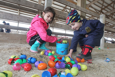 Candace H. Johnson-For Shaw Media Shelby Csario, 7, of Mundelein and her brother, Bradley, 3, pick up Easter eggs together during the Re/Max Center's Easter Egg Hunt at the Lake County Fairgrounds in Grayslake.(3/31/18)