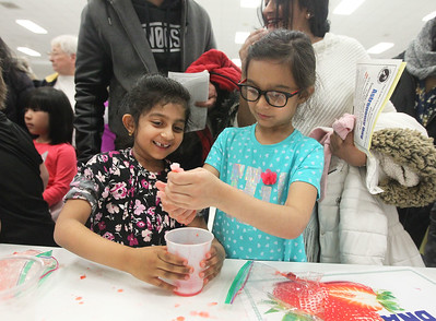 Candace H. Johnson-For Shaw Media Sana Menezes and Thania Rastham, both 6, of Waukegan work on squeezing strawberries into a cup to  extract their DNA for a science experiment sponsored by Naval Station Great Lakes Community Outreach during the Scouts of Gurnee Science Jam-STEAM Night at Woodland Middle School in Gurnee.(4/11/18)