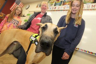Candace H. Johnson-For Shaw Media Julie Jensen, of Buffalo Grove, (center) with Two Paws Up Dog Training, and Leo, a ten-month-old Great Dane, visit with Cadettes Natalie Schlitt, 12, and Molly Lynn, 11, both of Green Oaks during a Girl Scout Troop 40151 meeting at Oak Grove School in Libertyville. Leo is a diabetic alert service dog in training. (4/10/19)
