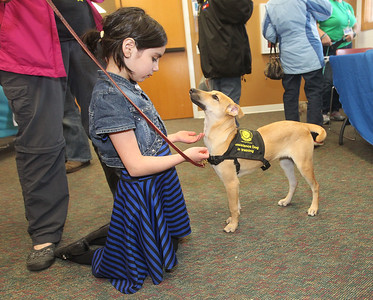 Candace H. Johnson-For Shaw Media Ava Flores, 8, of Round Lake pets India, a hearing dog in training with Dogs on the Go, during the Pet Expo at the Round Lake Area Public Library. India is a street dog who came from New Delhi, India. (4/13/19)