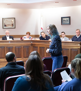 Dot Krawczyk raises issue with the way that the Richmond police department handled a case of road-rage where a gun was drawn by motorist at the Richmond village board meeting Thursday, April 18, 2019 in Richmond. KKoontz – For Shaw Media