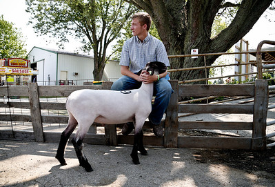 Josh Peckler - Jpeckler@shawmedia.com Bryce Lalor of Union holds onto his sheep while sitting on a fence before he takes it to the 4-H auction during the Mchenry County Fair in Woodstock Saturday, August 4, 2012.