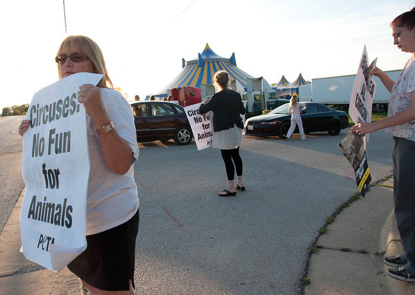 Peta protests hold signs and hand out flyers during the Piccadilly Circus Show at the Kane County Fair Ground in St. Charles Friday night. They join PETA, hoping to inform the public about the welfare of circus elephants.