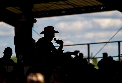 Sarah Nader - snader@shawmedia.com And auctioneer calls out numbers during the 4-H Livestock Auction at the McHenry County Fair in Woodstock Saturday, August 3, 2013.