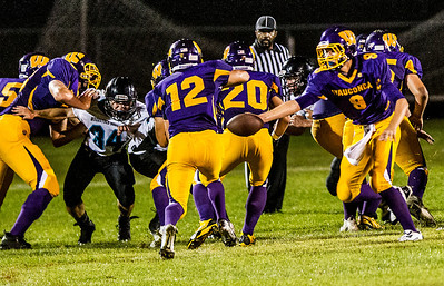 Kyle Grillot - kgrillot@shawmedia.com   Woodstock North junior Jordan Plummer (34) breaks through the line to make a tackle during the second quarter of the high school football game at Wauconda High School Friday, August 30, 2013.