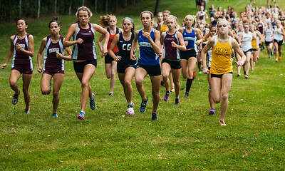 Kyle Grillot - kgrillot@shawmedia.com   The girls leaders during the 3-mile race of the McHenry County Cross Country meet at the McHenry Township Park Saturday, August 31, 2013.