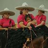 kcnews_mon0818_horsedrum2