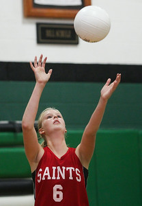 hspts_wed0827_VBALL_FL_AH2.jpg