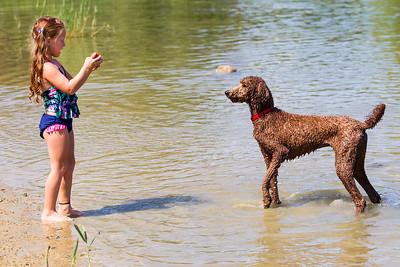 hnews_adv_Water_dog1.jpg