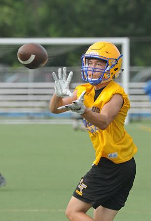 Lyons Township football preview