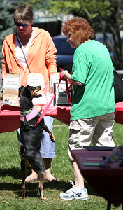 Kathy Bruhnke, from Woodstock, and her dog Rudy Dee Tuesday check out raffle prizes at the second annual Bark-a-Paw-Looza in Woodstock Square on Sunday, Aug.  John Konstantaras - For Saw Media