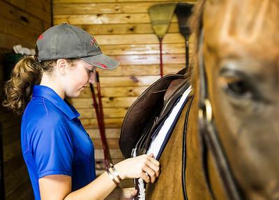 hnews_adv_sprts_Equestrian_5.jpg