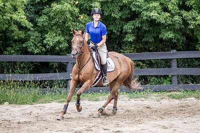 hnews_adv_sprts_Equestrian_8.jpg