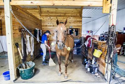 hnews_adv_sprts_Equestrian_7.jpg