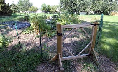 LCJ_0824_Lind_Community_GardenI
