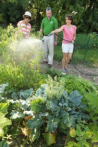LCJ_0824_Lind_Community_GardenE