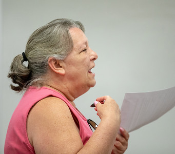 Deborah Jenssen raises the issue of nepotism to the Algonquin Township board Wednesday, August 8, 2018 in Crystal Lake. KKoontz – For Shaw Media