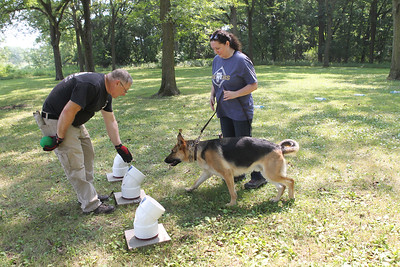 Candace H. Johnson-For Shaw Media Bill Miller, of Round Lake Park, operations director and K-9 handler, works with Maria Christiansen, of Kenosha, Wis., on training Oso, a two-year-old German Shepherd, to identify which scent tube has human fat in it during Disaster Dogs of Illinois training at the Lakewood Forest Preserve in Wauconda. Oso is a possible candidate in training to become a cadaver dog for Disaster Dogs of Illinois. (8/12/18)