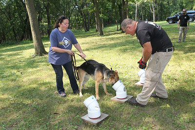 Candace H. Johnson-For Shaw Media Bill Miller, of Round Lake Park, operations director and K-9 handler, (on right) works with Maria Christiansen, of Kenosha, Wis., on having her dog, Oso, a two-year-old German Shepherd, detect human fat in one of the scent tubes during Disaster Dogs of Illinois training at the Lakewood Forest Preserve in Wauconda. Oso is a possible candidate in training to become a cadaver dog for Disaster Dogs of Illinois.(8/12/18)