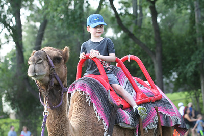 Candace H. Johnson-For Shaw Media Jude Huval, 5, of Grayslake rides a camel during the 6th Annual Color Aloft Balloon Festival at Central Park in Grayslake.The camel came from County Line Farm in Barrington.(8/25/18)