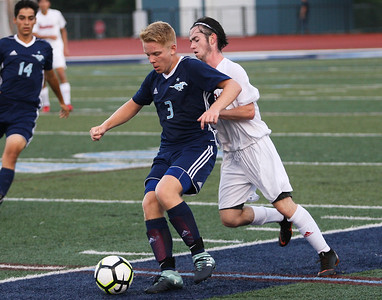 Downers Grove South vs. Hinsdale South Soccer