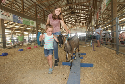 Candace H. Johnson-For Shaw Media Genevieve Strait, 4, of McHenry goes through the Goat Obstacle Course with Piper Jensen, 13, of Gurnee and her Alpine goat named, Loretta, during the Lake County Fair at the Lake County Fairgrounds in Grayslake. (7/25-7/28/19)