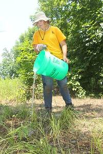 Candace H. Johnson-For Shaw Media Grace Stang 16, of Ingleside waters newly planted native plants during a Youth Conservation Corps 2019 project near the Rollins Savanna Native Seed Nursery on Washington Street in Grayslake. (7/25/19)