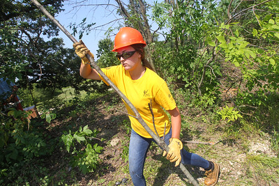 Candace H. Johnson-For Shaw Media Shannon Grobelny, 18, of Wauconda helps cut down buckthorn trees and carry them to a pile during a Youth Conservation Corps 2019 project at the Nippersink Forest Preserve on Route 120 in Round Lake. (7/25/19)