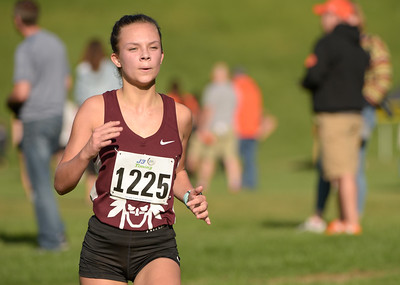 McHenry County XC-38