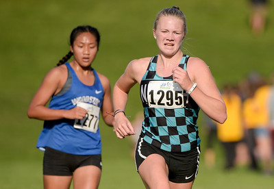 McHenry County XC-33