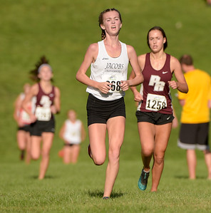 McHenry County XC-15