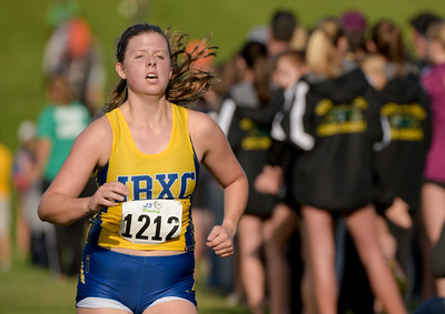 McHenry County XC-35