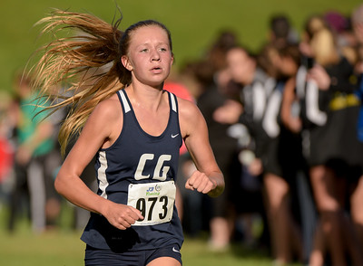 McHenry County XC-25