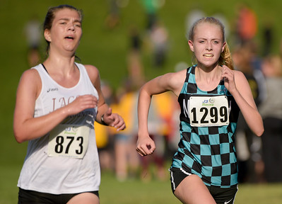 McHenry County XC-32