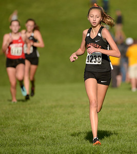McHenry County XC-31