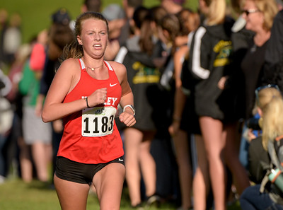 McHenry County XC-18