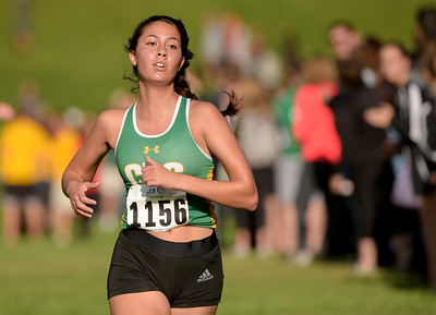 McHenry County XC-24