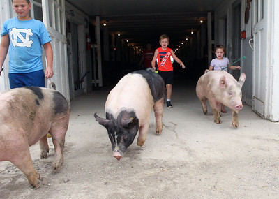Candace H. Johnson-For Shaw Media Jackson Yarc, 10, Quincy Gross, 9, of London, Ohio and Jackson's sister, Lucy, 4, walk some pigs to practice showing the animals at Yarc Farms in Libertyville. (8/1/20)